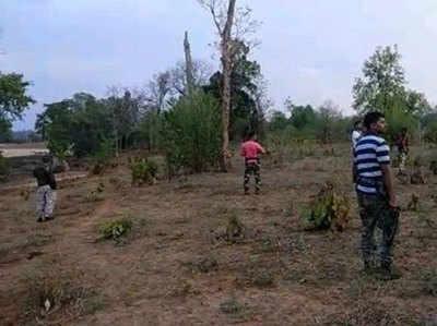 फाइल फोटो: तलाशी अभियान चलाते सुरक्षाकर्मी