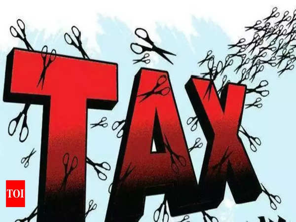 union budget 2019 tax relief for salaried class in interim budget 2019
