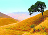 kudremukh national park karnataka best time to visit entry fee and what to see here