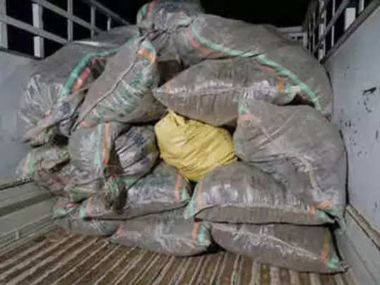 सव्वा लाखाच्या शेणाची चोरी, सरकारी कर्मचाऱ्याला अटक