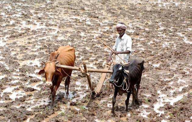 PM-किसान योजना का पोर्टल लॉन्च, देख पाएंगे अपना नाम