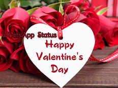 2019 valentines day love wishes images whatsapp messages to lover boyfriend girlfriend