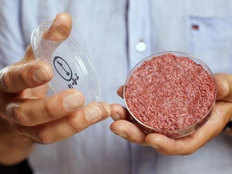 without slaughtering animals now desi laboratory will prepare animal meat