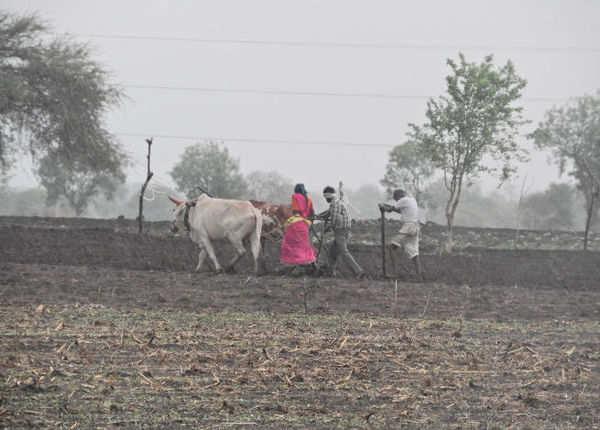 पीएम किसान योजना, इनकम टैक्स देने वालों को फायदा नहीं
