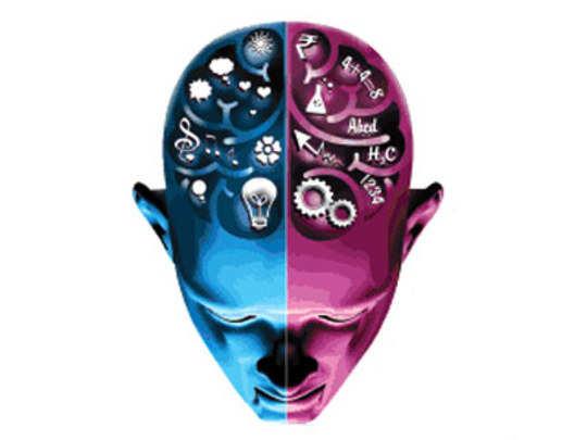 brain-economy