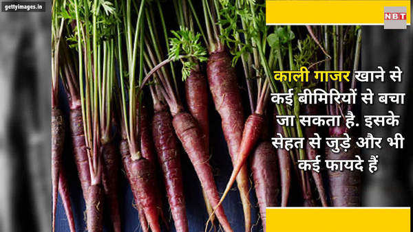 purple carrot decreases the risk of cancer