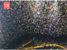these pictures will show that kumbh mela is massive