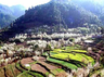 romantic trip planing for newly married couple and love couple romantic places in himachal
