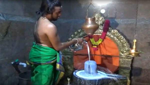 mahashivratri 2019 devotees fast on occation of shivaratri
