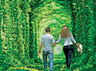 tunnel of love in ukraine the place for lover to walk hand in hand best place for honeymoon best place for couples