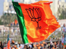 bjp in search of strong candidates in haryana for loksabha polls