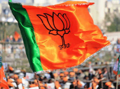 Chunaav Samiti Se Pehle Ummeedavaaron Ke Chayan Ki Taiyaari Mein Juti BJP