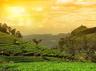 कामदेव का क्षेत्र है यह, प्रकृति की गोद में यहां जाएं हनीमून पर