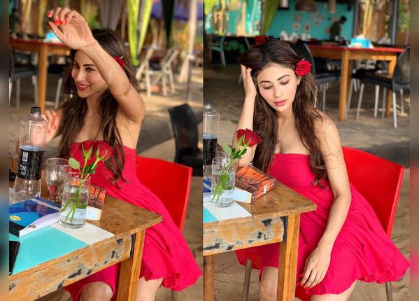 लाल गुलाब के साथ मौनी