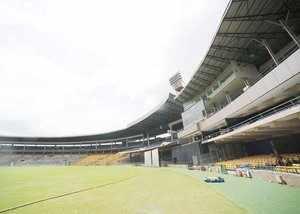 bangalore to make matches pet friendly at chinnaswamy stadium
