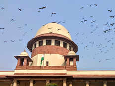 cant feed birds from flats balcony and create nuisance for others says sc