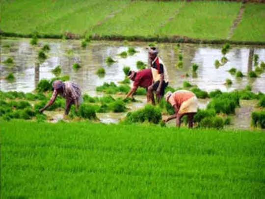 Kisan Samman Nidhi: शेतकरी मदतीचा हप्ता पुढच्या महिन्यात मिळणार