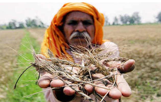 पीएम नरेंद्र मोदी के खिलाफ चुनाव लड़ेंगे तमिलनाडु के किसान, दान से जुटाएंगे पर्चा भरने के पैसे