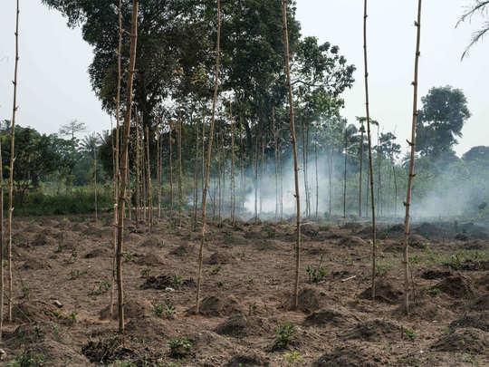 नाइजर इलाके में बोको हराम कर चुका है कई हिंसक वारदात