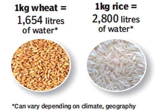 गेहूं, चावल की वजह से ज्यादा इस्तेमाल