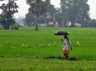 overall the country is expected to have well distributed rainfall in 2019 says imd