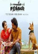 madhampatty rangaraj shweta tripathi rj vigneshkanth starrer action romantic drama mehandi circus review rating