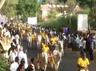 bullock cart racing conducted in pudukkottai sri muniyandavar temple