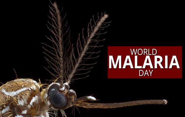 वर्ल्ड मलेरिया डे पर जानें बीमारी से बचाव और इलाज के तरीके