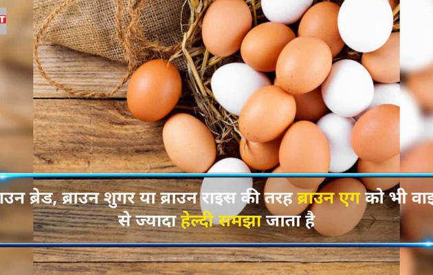 कौन सा अंडा है हेल्दी- वाइट या ब्राउन