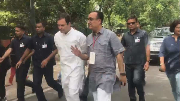 lok sabha elections confident of win says rahul gandhi after casting his vote