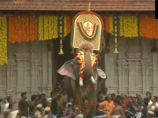 54 वर्षीय हाथी तेचिककोट्टूकवू रामचंद्रन