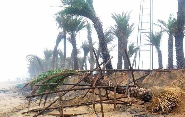 फोनी तूफान: ओडिशा के सीएम ने राज्य के लिए विशेष दर्जे की मांग की