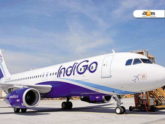 share price of indigo airlines dropped at an alarming rate