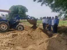 18 quintals bt brinjal crop destroyed in fatehabad
