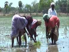 tamil farmers request government to ban hydrocarbon project