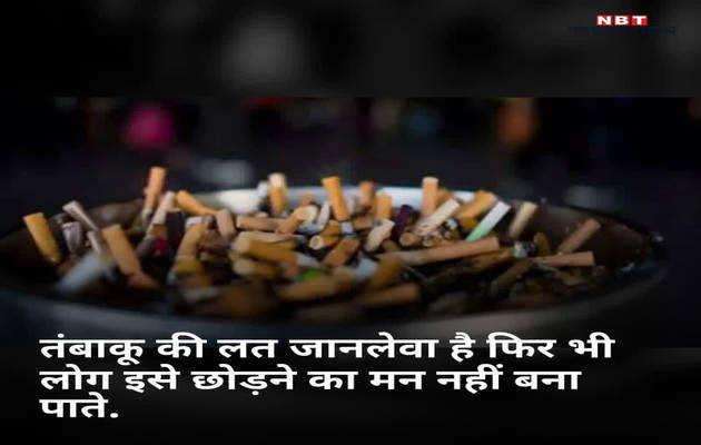 वर्ल्ड नो टबैको डे: मुश्किल नहीं तंबाकू छोड़ना, चाहिए इच्छाशक्ति