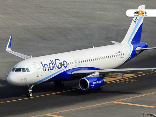 indigo airlines may throw challenge to middle east airlines companies