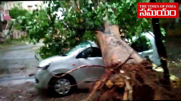 heavy rains in hyderabad tree fell down on car in neredmet