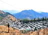 plan a solo trip to dhanaulti this june