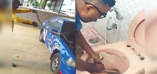 बेंगलुरु: गर्मी से बचने के लिये टॉइलट कमोड तो कहीं कार के बोनट में छुप रहे सांप