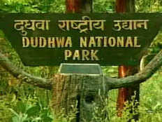 if you are fond of wildlife must visit dudhwa