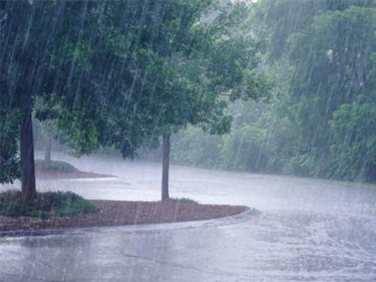 शहरासह जिल्ह्यात दमदार पाऊस