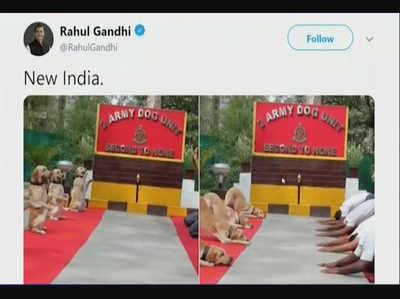 योग दिवस पर राहुल गांधी का ट्वीट, सोशल मीडिया पर हुए ट्रोल