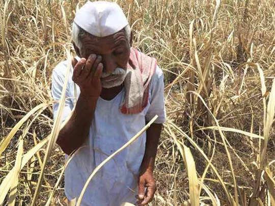 maharashtra-farmer 22