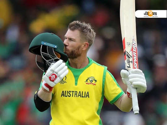 the new avatar of australian batsman david warner