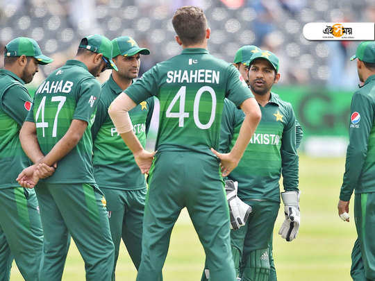 pakistan cricket fraternity disappointed about india's performance