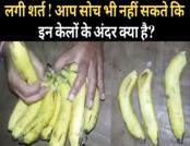 सोशल स्यापा: केलों में छुपाया कुछ ऐसा, विडियो वायरल