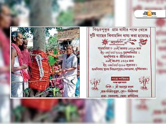 banyan and pakur tree marriage to overcome water crisis