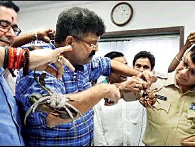 सावंत की टिप्पणी के बाद पुलिस को केकड़े देते एनसीपी कार्यकर्ता