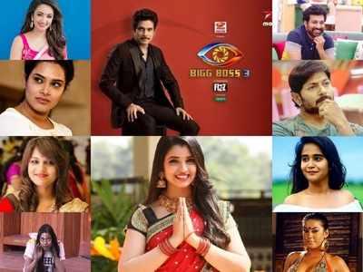 bigg boss telugu contestants: Bigg Boss Telugu 3 Contestants